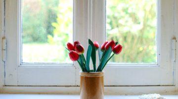 Jak chłodzić wnętrze bez klimatyzacji
